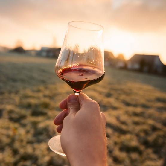 vino rosso (1)